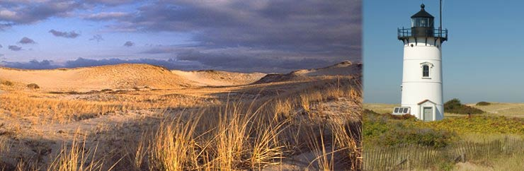 Wellfleet ma town information for visitors to cape cod for Cape cod chat rooms